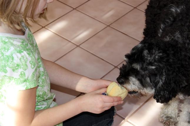 Sharing a cupcake