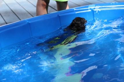 cocoa swimming (61)
